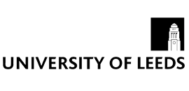 MSc Business Analytics and Decision Sciences Logo